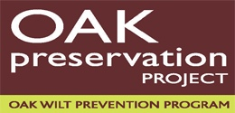 Oak Preservation Project