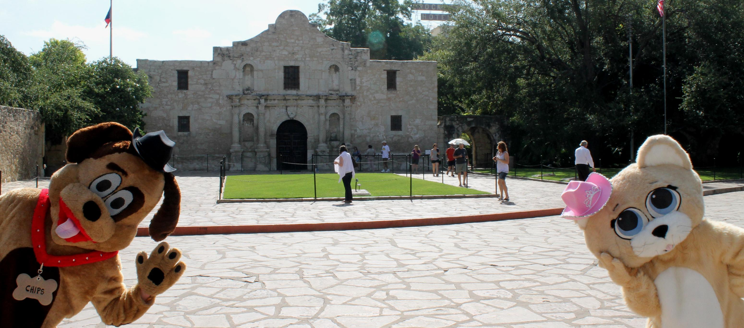 Chips the Dog and Salsa the Cat at the Alamo