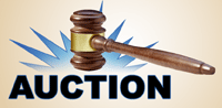 Seized Asset Auctions