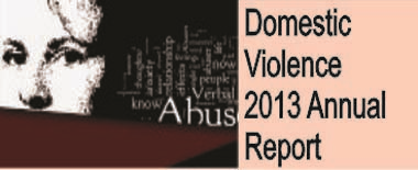 2013 Annual Domestic Violence Report