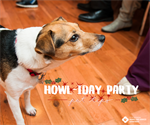 Be Merry! Howl-iday Party Tips for Your Pet!