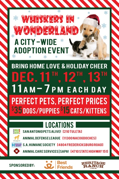 Whiskers In Wonderland City Wide Adoption Event The City Of San