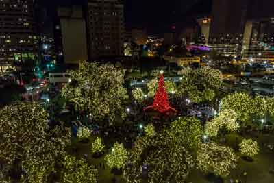 Heb Hours Christmas Eve.H E B Holiday Tree Lighting Ceremony The City Of San
