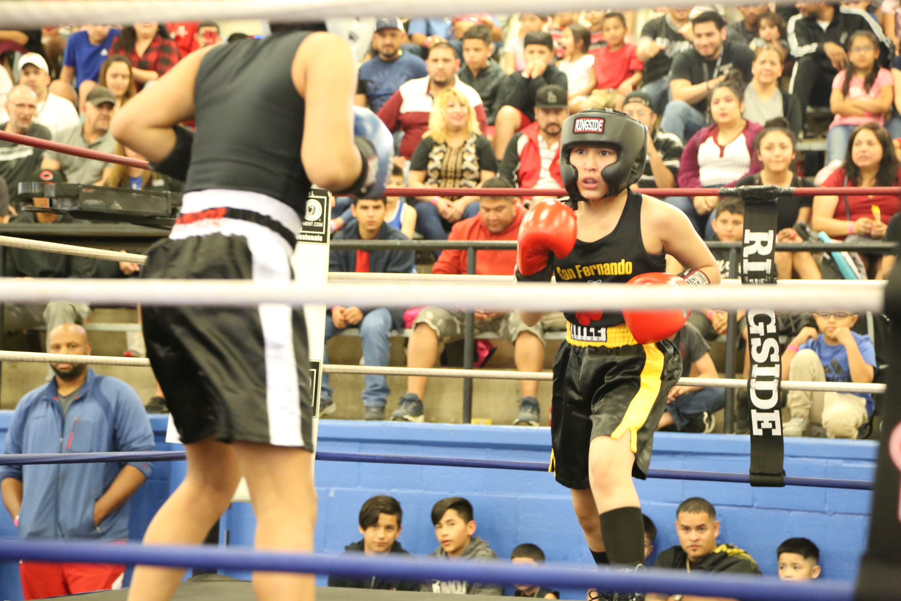 Youth boxing match