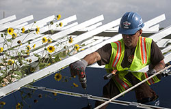Man putting in Solar Panels