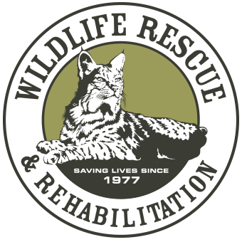 Wildlife Rescue and Rehabilitation Logo