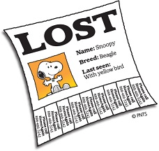 Lost Your Pet?