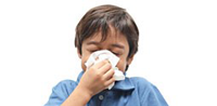 Healthy Habits to Prevent Flu